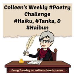 colleen poetry challenge